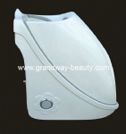 wet steam sauna therapy equipment spa capsule